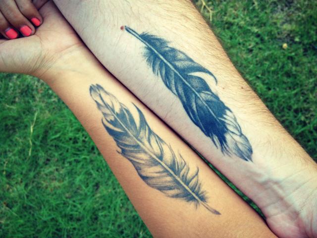 stelabird feathers