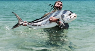 Baja anglers monster roosterfish off the beach for Rooster fish cabo