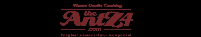 AntZ4.com