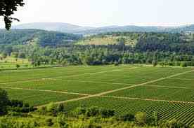 Υποχρεωτικά στην εφορία τα ενοικιαστήρια αγροτικής γης