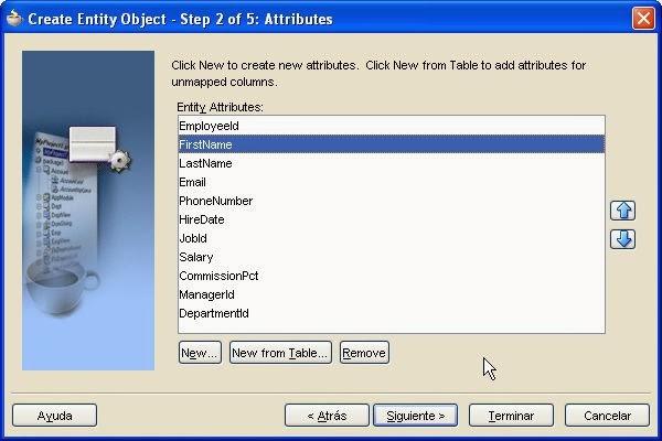 seleccion atributos entity