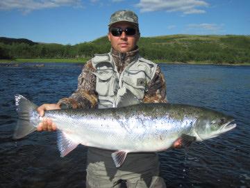 International fishing news russia varzina river salmon for Atlantic salmon fishing