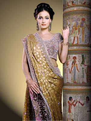 Dia Mirza in saree