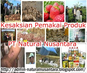 http://admin-naturalnusantara.blogspot.com/2012/09/kesaksian-pemakai-produk-pt-nasa.html