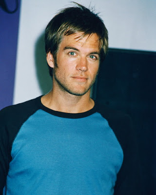 imagenes Michael Weatherly