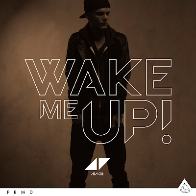 Avicii - Wake Me Up, letra, lyrics