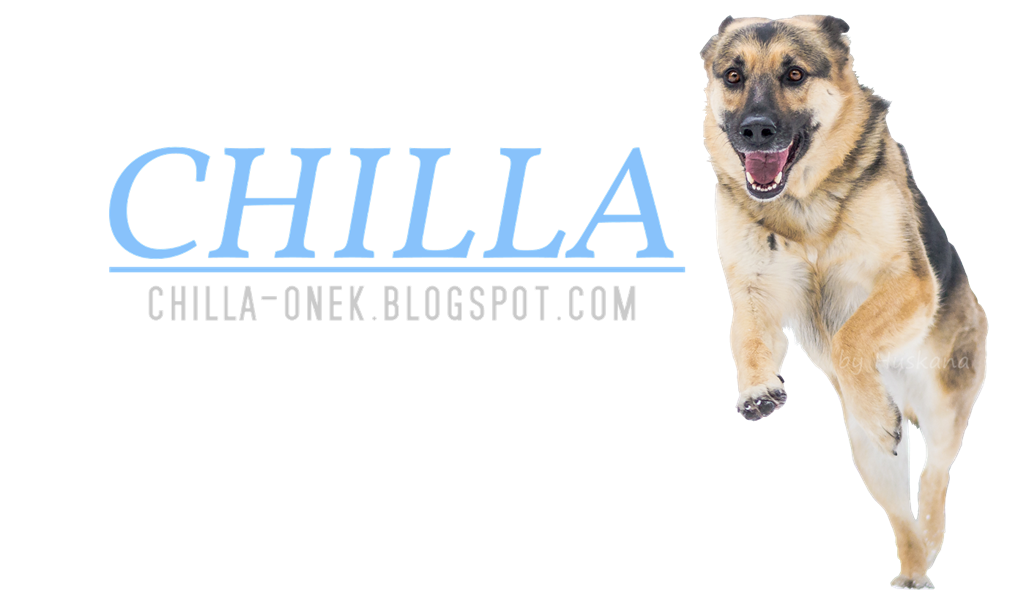 Chilla Amazing ONek