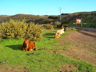 Paul do serra, Madeira, Portugal, La vuelta al mundo de Asun y Ricardo, round the world, mundoporlibre.com