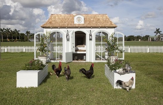 luxury french henhouse house for hens and chickens