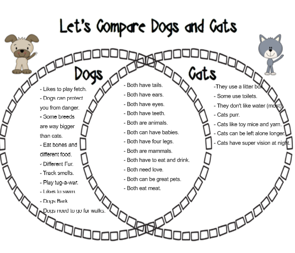 compare and contrast between cats and dogs essay Comparison and contrast - dogs and cats essays when wondering whether you want to get a dog or cat as a pet, you should first ask yourself: why would i possibly want to get either in the first place.