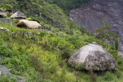 Imag-6_paisaje-natural-area_verde-melanesia