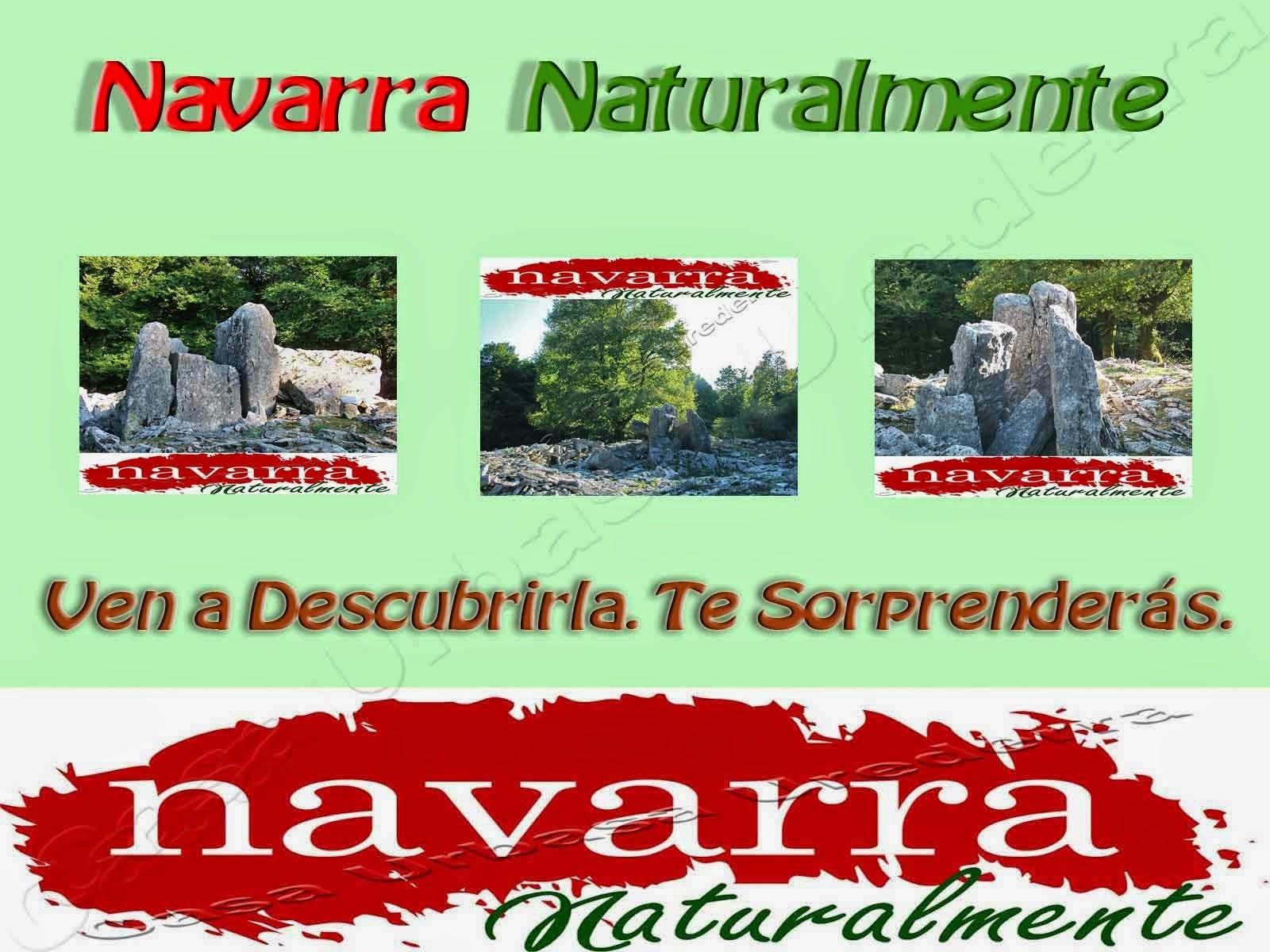 http://casaruralnavarraurbasaurederra.blogspot.com.es/2015/02/44-VI-Congreso-Turismo-Rural-Navarra-2015-Espectativas-Poco-Ambiciosas-.html - En mi opinión, un congreso con prestigio, con un alto presupuesto económico, debería de esforzarse en  programar y ofrecer ponencias, más  orientadas a los profesionales, que traten y analicen los verdaderos problemas del sector, tanto de Navarra como de España y que sean útiles para las demandas y necesidades del gran  colectivo existente en España.  Solamente de esta manera, se puede conseguir atraer al mayor número de congresistas  profesionales,  y a los innovadores, que son los que pueden aportar cosas nuevas, tan necesitadas en el sector con toda su problemática intrínseca y extrínseca.  Con la programación de la edición de este año del Congreso Turismo Rural de Navarra 2015,  sabemos que no es un programa muy atractivo y por ello, no tiene mucho interés, razón por la cual tenemos conocimiento  que algunos profesionales no van a venir a Pamplona.  Tengo la convención de que, conociendo a los organizadores, el congreso está más enfocado   al lucimiento  de ciertas personas e instituciones, que  a analizar profundamente los problemas reales y futuros, así como de  debatir posibles soluciones del Turismo Rural.