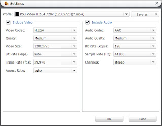 MKV to PS3 Converter codec settings