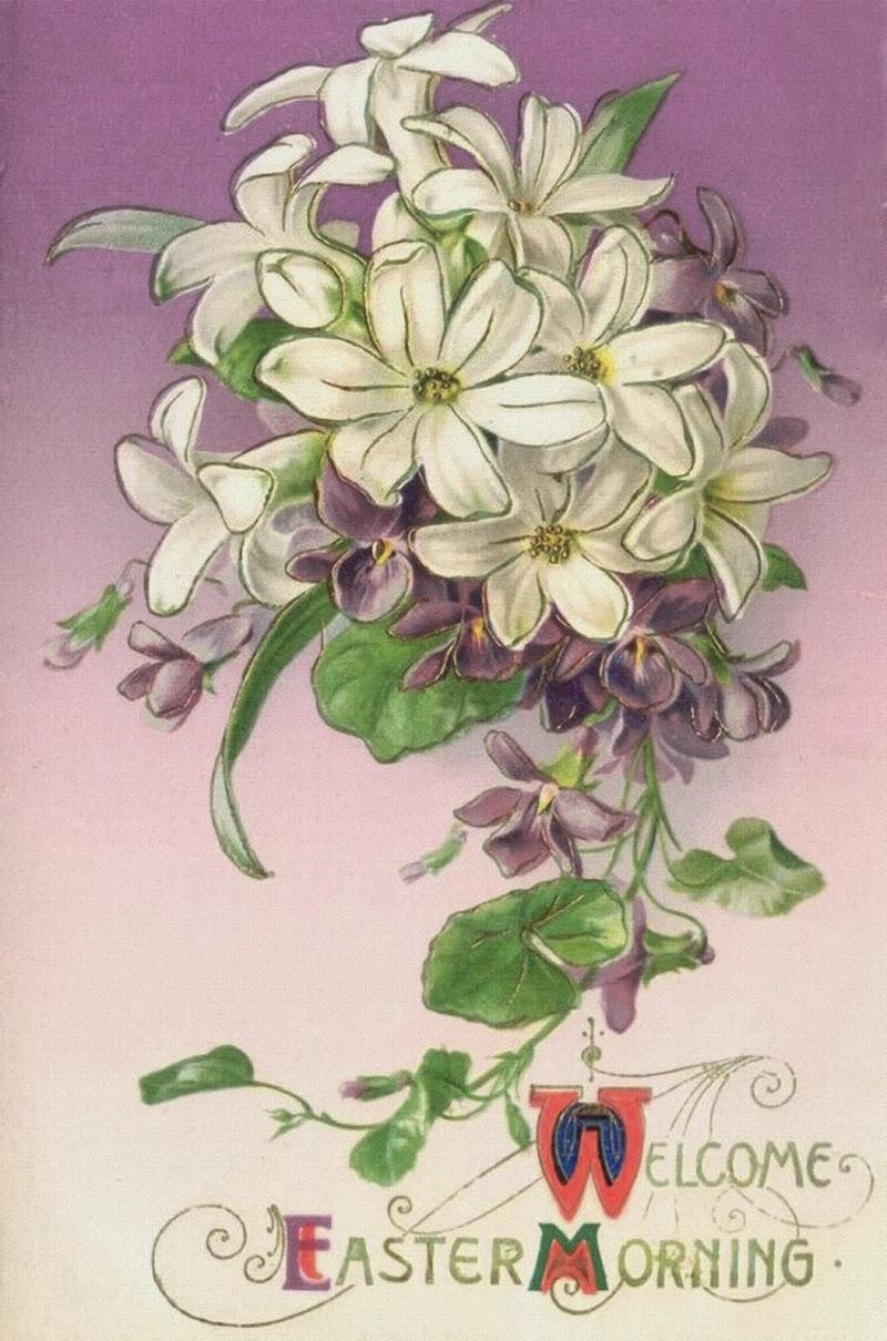 carte ancienne fleur