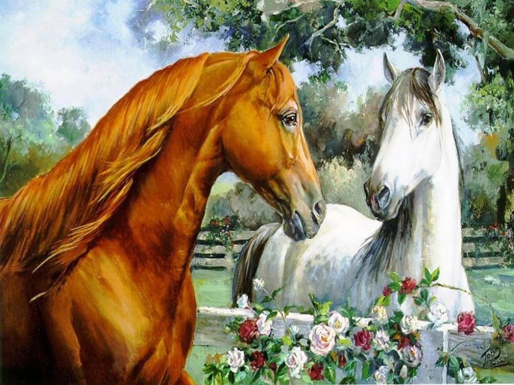 Beautiful   Wallpaper Horse Laptop - horse-wallpapers  Graphic_13834.jpg