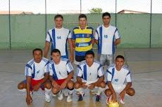 GRÊMIO 2011