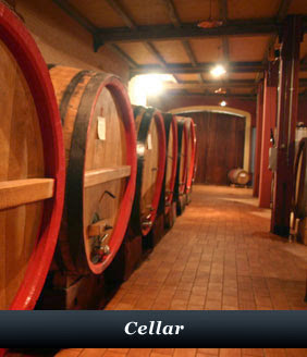 Wine cellars of Azienda Agricola Fenocchio Piedmont