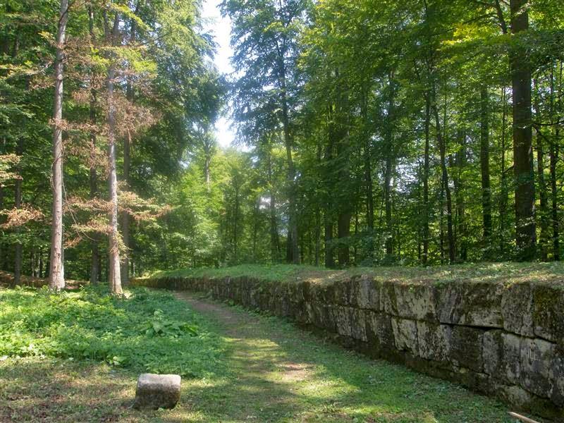Muralla de Sarmizegetusa Regia