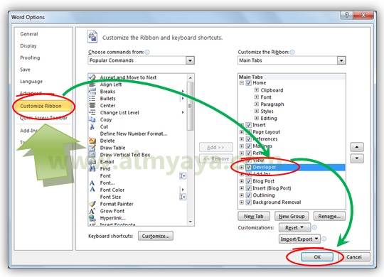 Gambar: Cara memunculkan tab ribbon Developer di Microsoft Word