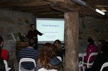 Workshops Feira da Primavera 2011