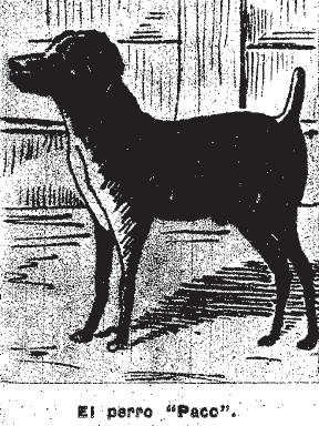 """El perro """"Paco"""""""