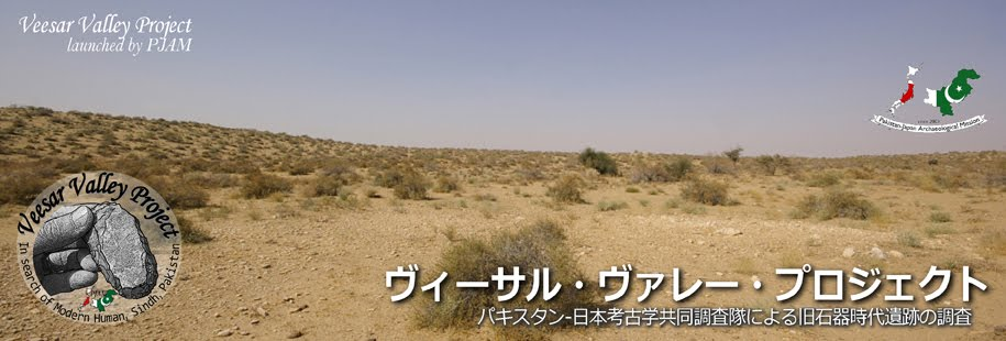 ヴィーサル・ヴァレー・プロジェクト(日本語版)