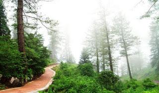 Daringbadi – Hill Station in Odisha
