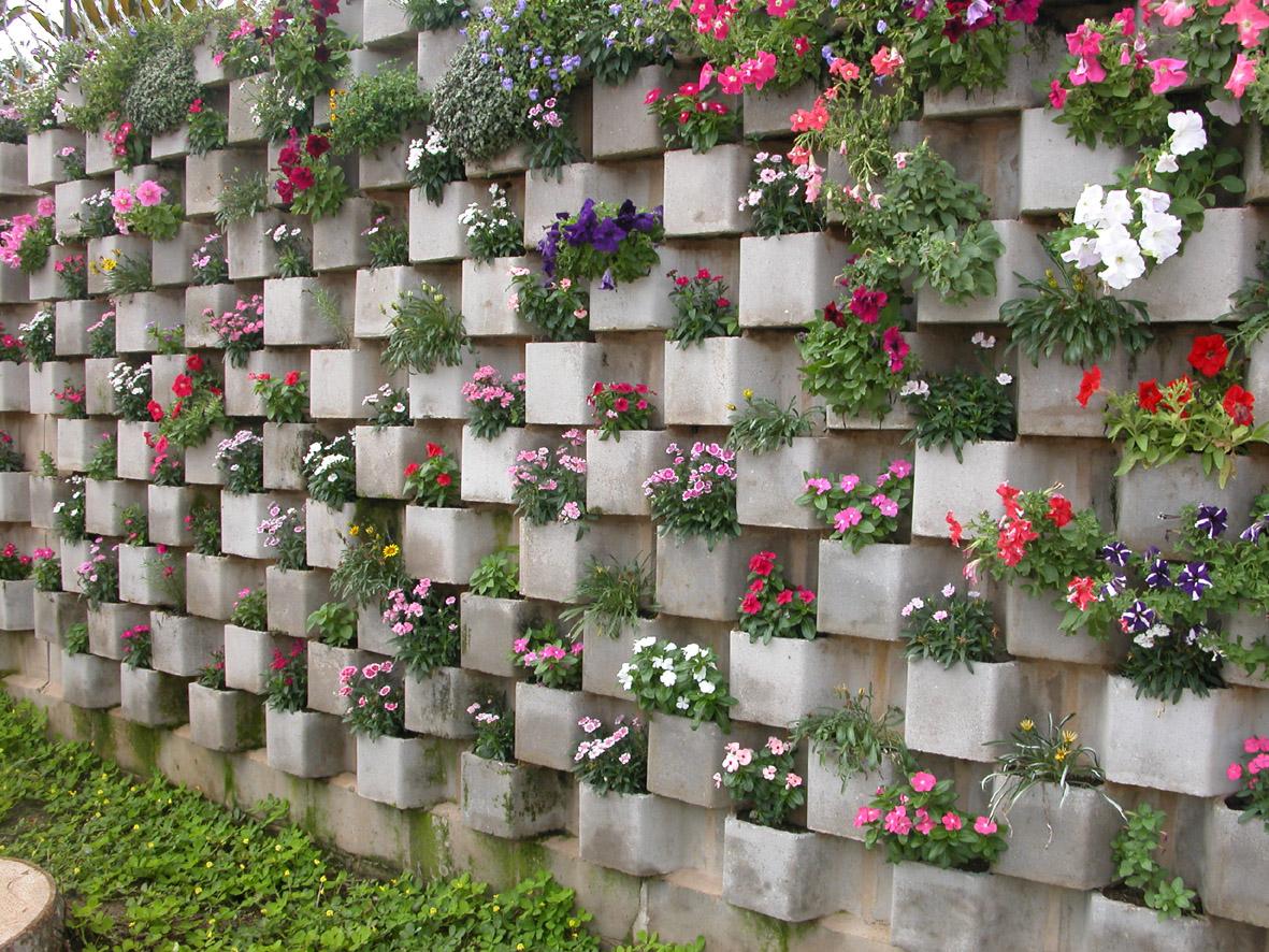 jardim vertical em muro:Vertical Muro