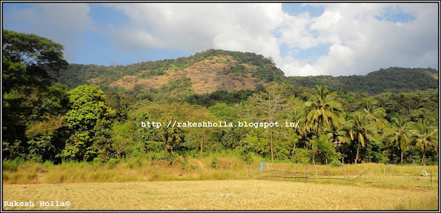 Mookambika Wildlife Sanctuary