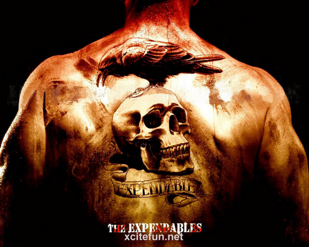 Fantastic Wallpaper Movie Hollywood - 164364-xcitefun-the-expendables-wallpapers-2  2018_619744.jpg