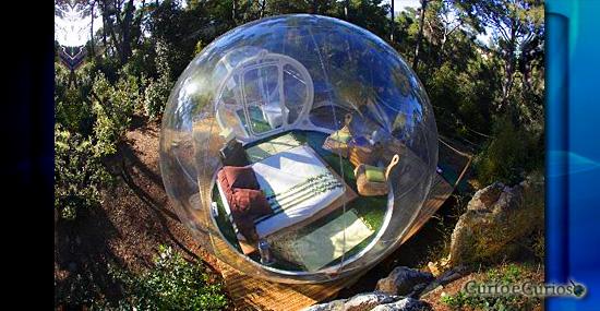 Os 7 hotéis mais exóticos do mundo - Hotel bolha na floresta