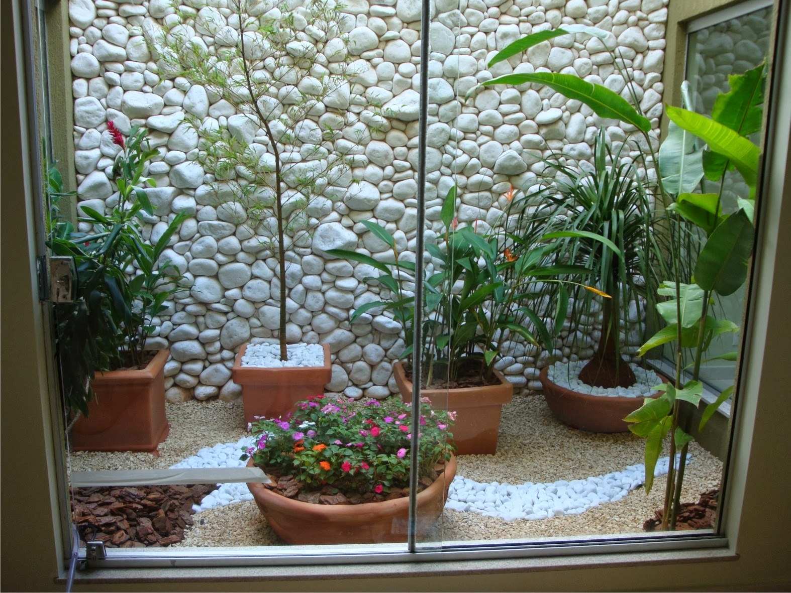 plantas jardim fotos:Jardim de Inverno – veja modelos, dicas e sugestões de quais planta