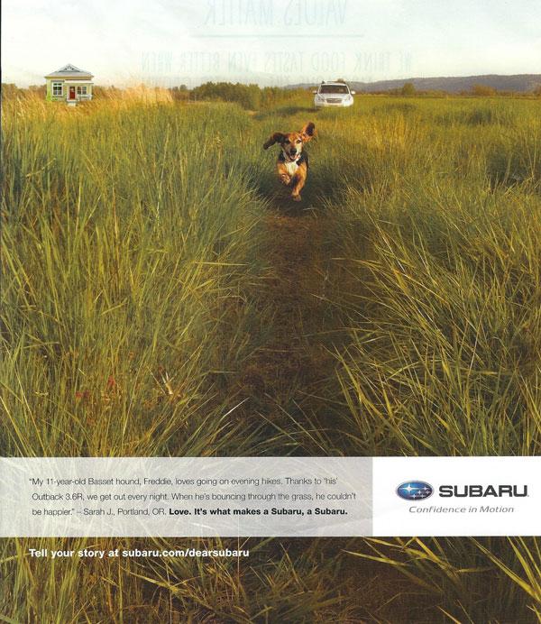 Subaru ad with a bassett hound running through the field