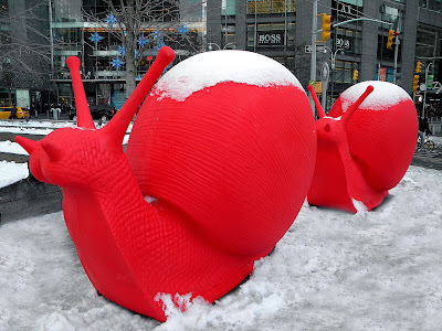 Christmas Snails in the Snow New York City photo image