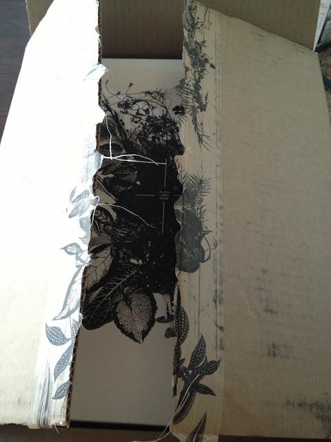 Aritzia shipment outter box
