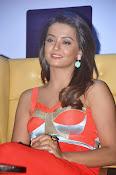 Surveen Chawla latest glamorous photos-thumbnail-7