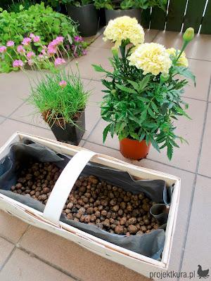 keramzyt ogrodniczy