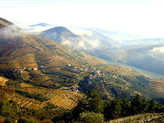 The pastoral countryside of Pinhão beckons to wine lovers everywhere. Photo