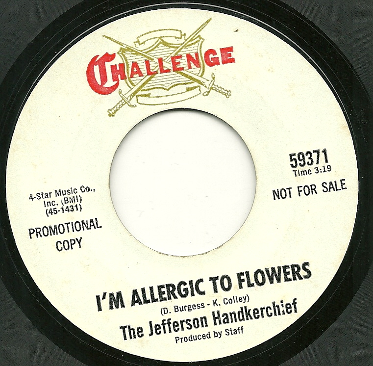 Jefferson Handkerchief Im Allergic To Flowers The Little Matador