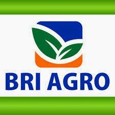 Informasi  Lowongan Kerja di PT BRI Agroniaga