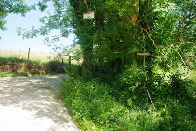Collado de Igena, inicio de la ruta al Mofrechu