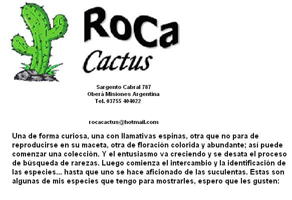 Vivero RoCa Cactus