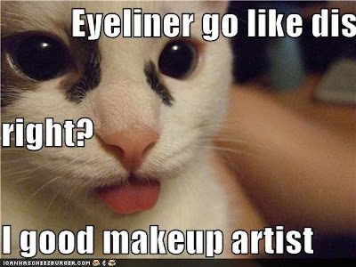 Social Commentary in LOLcat - Eyeliner go on like dis right?  I good makeup artist