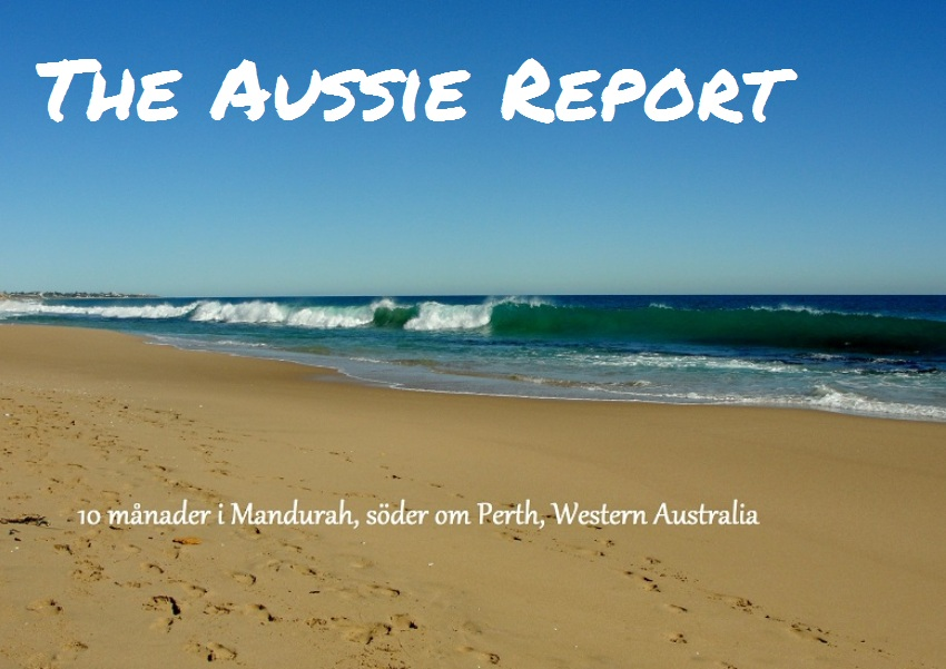 The Aussie Report