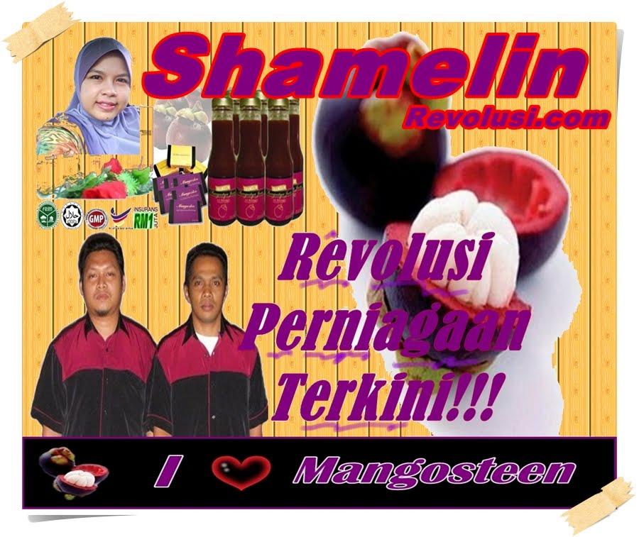 ShamelinRevolusi.com