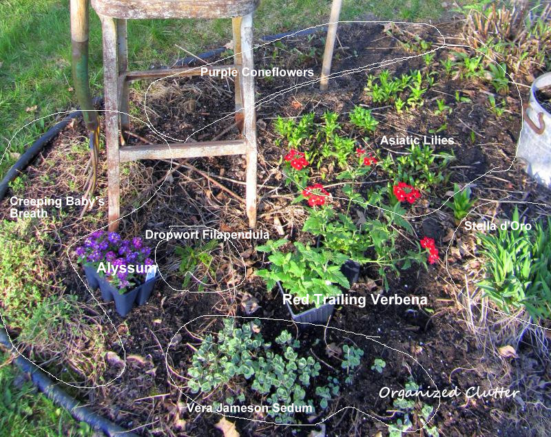 Planning planting my front yard border 2014 organized clutter - Perennial flowers for borders visual gardens ...