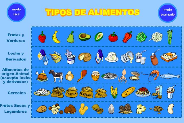 Laminas cinco alimentos de origen animal - Imagui