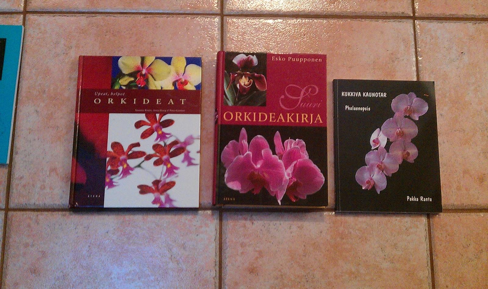 romanttiset kirjat varattu nainen