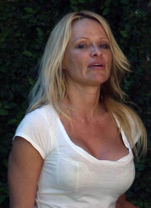 Pamela Anderson No Makeup