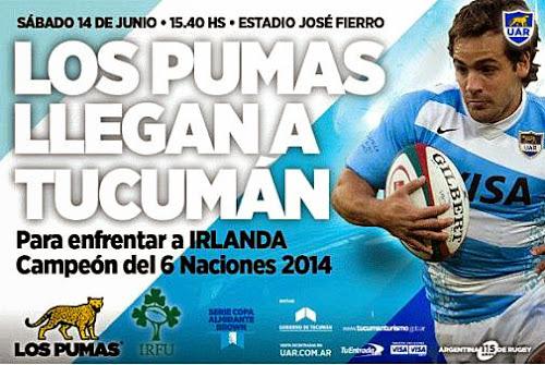 Los Pumas vs. Irlanda en Tucumán